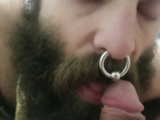 bearded bearded bear smells and suck cock bear